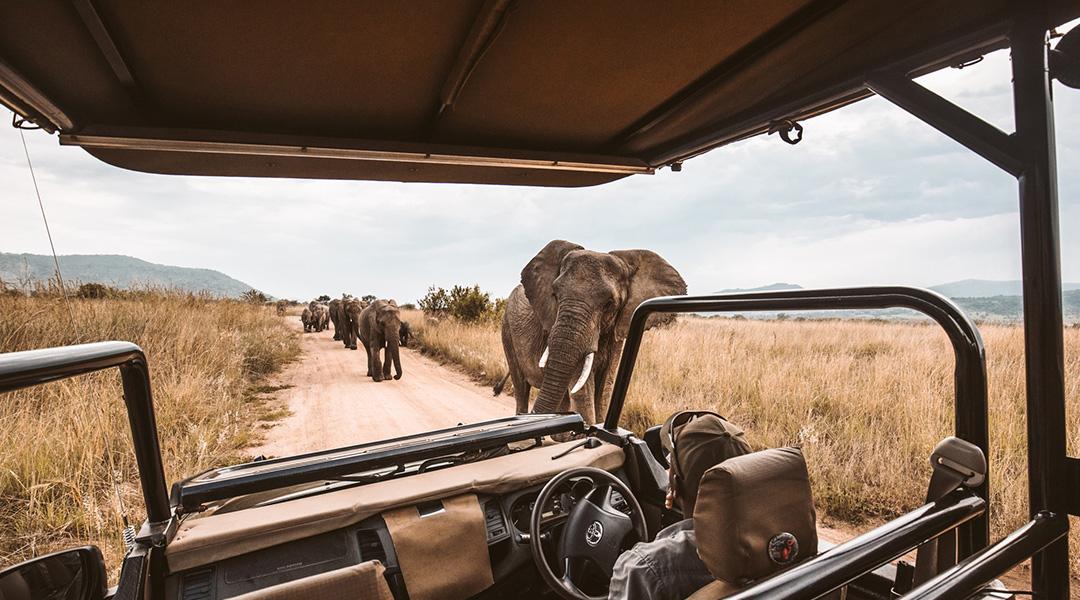 Experience it – Zimbabwe