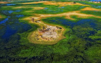 Experience It – The Okavango Delta