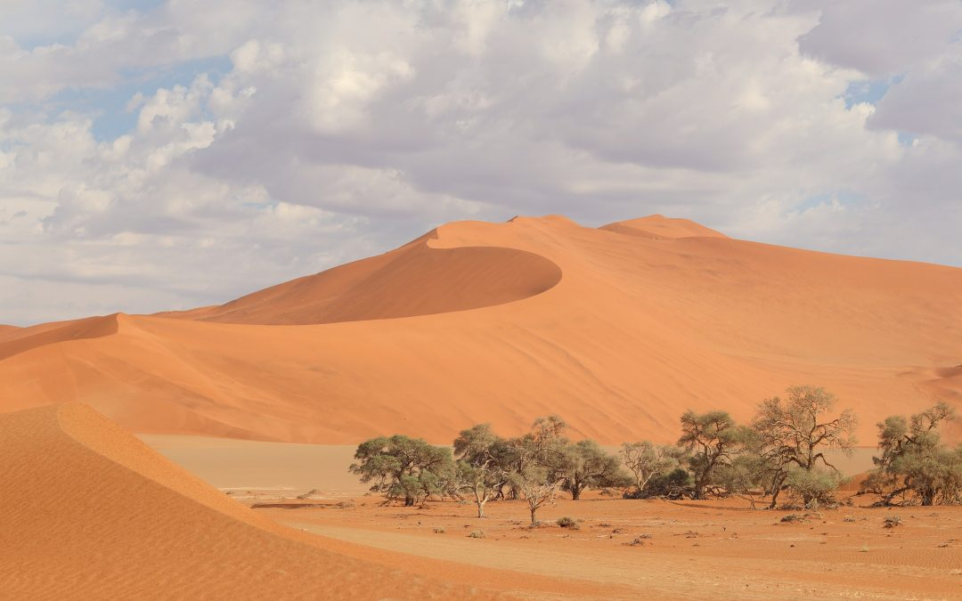 Experience It: Sossusvlei, Namibia: What To Expect