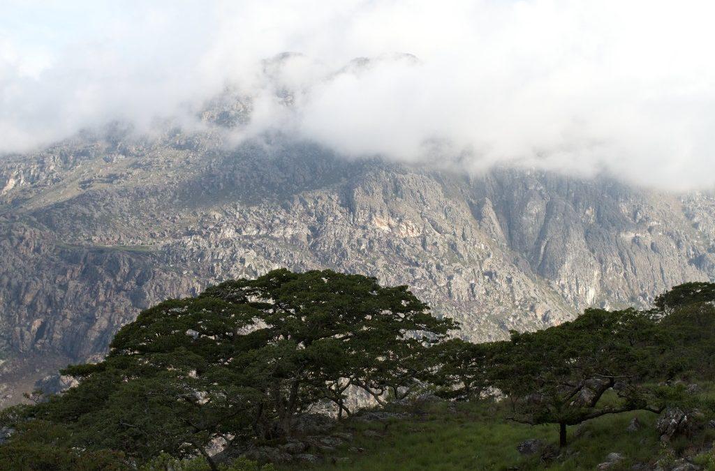 Experience It: Chimanimani National Park: Rugged Peaks & Sparkling Pools