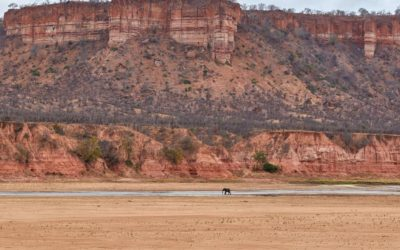 Experience It: Gonarezhou National Park – Dramatic Cliffs & Chequered History